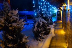 През зимата
