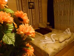 Нашите стаи